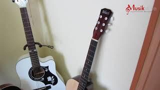 Гитара для начинающего. Акустическая или классическая гитара? Обзор моделей-(ч2)   musik-store.ru