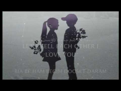 babak jahanbakhsh-dooset daram ( lyrics+English translation)