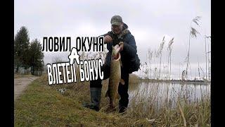 Первая мартовская рыбалка Спиннинг Ловил окуня а влетела крупная щука Вот это бонус