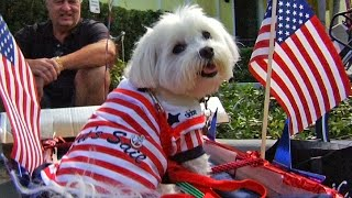 """6th Annual """"Pets on Third"""" Parade 
