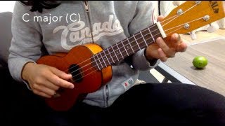 Cover images Poo Pookum Osai - Simple Ukulele Tutorial