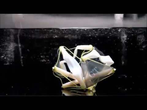 3-D Printed Tensegrity Objects Capable of Dramatic Shape Change