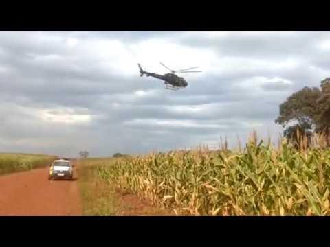 Missal: Polícia Militar apreende maconha em abordagem à dois veículos na rodovia PR 495
