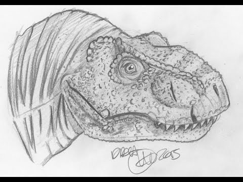 Comment dessiner un t rex avec christin 39 art partie 1 youtube - Dessiner dinosaure ...
