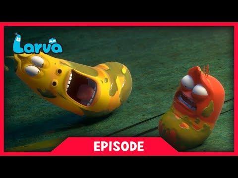 LARVA - OIL | Cartoon Movie | Cartoons For Children | Larva Cartoon | LARVA Official