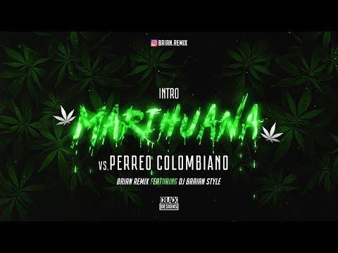 INTRO MARIHUANA VS PERREO COLOMBIANO - RKT - BRIAN REMIX ✘ DJ BRAIAN STYLE