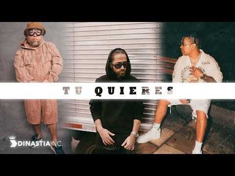 Amaro Ft Ñejo  Dalmata  -  Tu Quieres Official Remix (Audio)