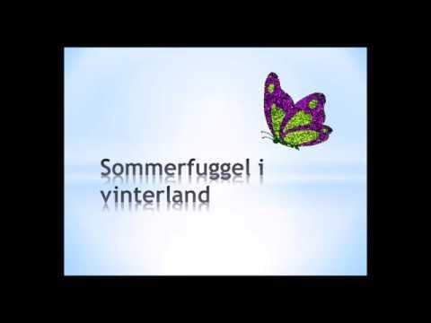 Sommerfuggel i vinterland karaoke/ uten vokal