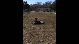 Rocky Road K9 Dog Training Myrtle Beach, Sc - Impulse Control On Place
