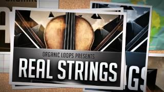 Real Strings Vol 6 - Broken Chords - Kontakt Instrument