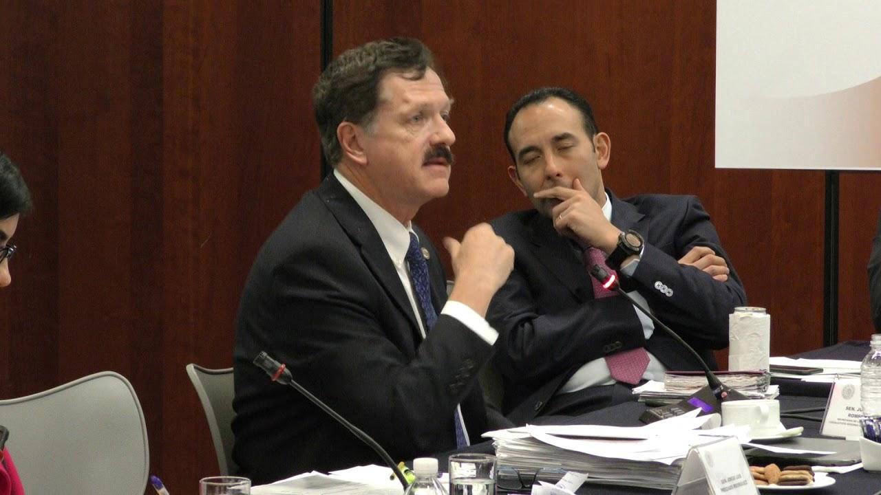 Senador Juan Carlos Romero Hicks Análisis De La Minuta