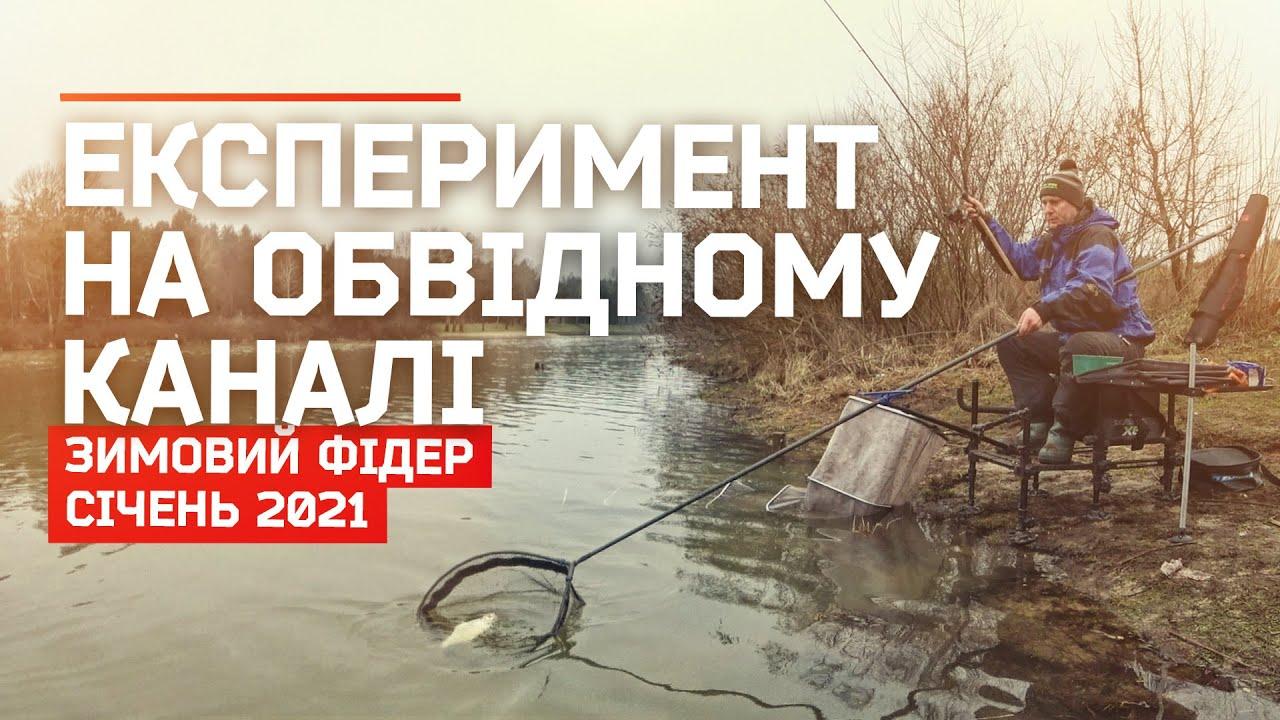 Зимовий фідер на Обвідному каналі 2021
