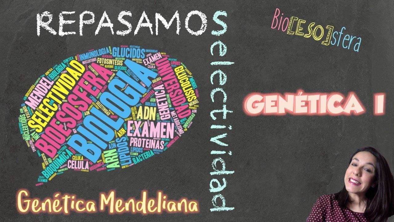Repasamos Selectividad PAU Biología: Genética I (Problemas de genética mendeliana) - Bio[ESO]sfera