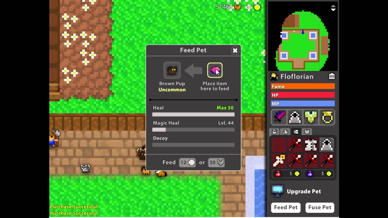 rotmg floflorian feeding my pet part 1 youtube rh youtube com realm of the mad god pet feeding guide RotMG Memes