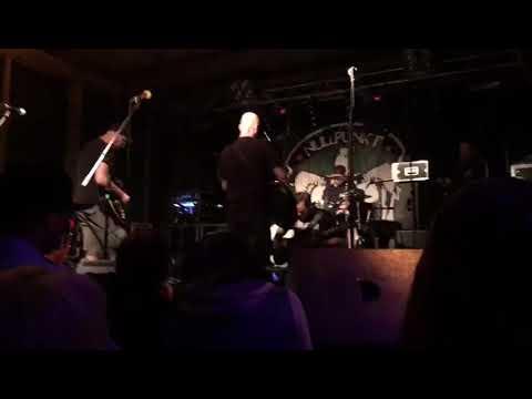 Nullpunkt - Apfelbaum (live)