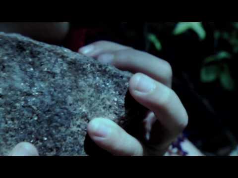 Death Rattles - Woods