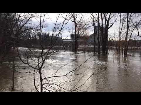 Flooding - Red Cedar River on MSU Campus   WKAR News Bit   NPR
