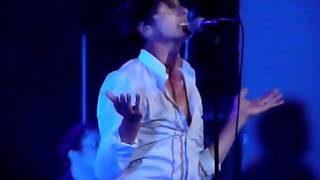 Suede - Pantomime horse (live)