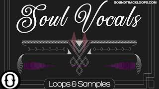 Soul Vocals – Loops and Phrases Royalty Free Sounds