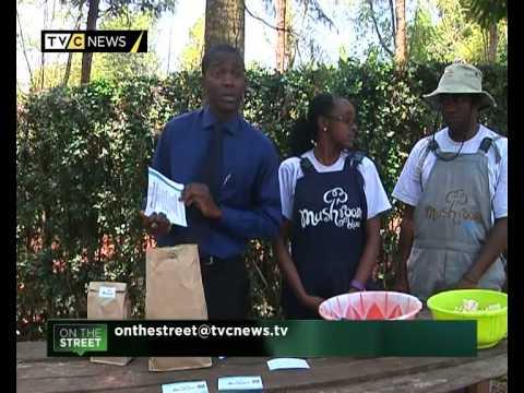 Meet the youths behind one of Kenya's biggest mushroom farms - Mushroom Blue   TVC News