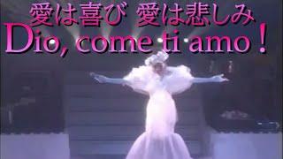 貴方とワ・タ・シ... 愛と夢 風さやか Grand Show」(1996年6月22日、新...