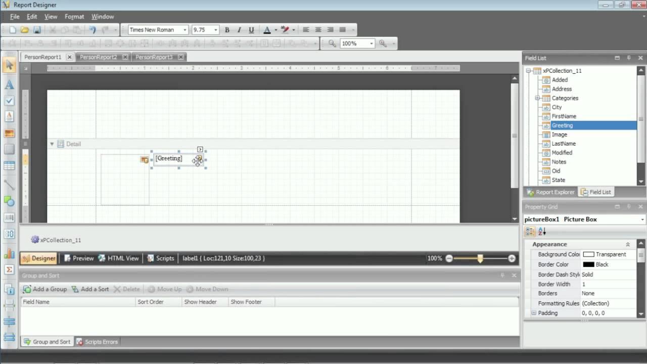 Devexpress Report Designer