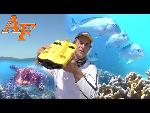 Save $500 On Gladius Mini Drone - Catch And Cook Steamed Fish EP.448