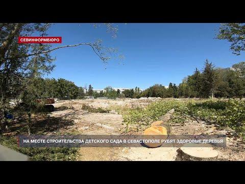На месте строительства детского сада в Севастополе рубят здоровые деревья
