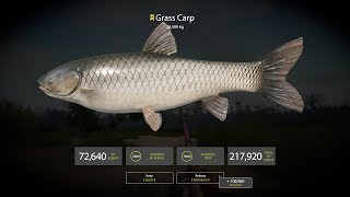 Russian Fishing 4 ★ 冠軍草魚(Trophy Grass Carp, 28.509kg)[20190427]