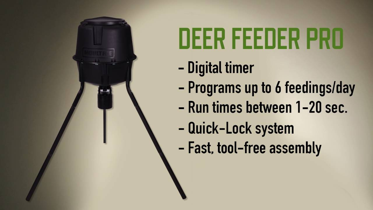 best feeders one deer in reviewed all kit thegearhunt rated feeder moultrie timer
