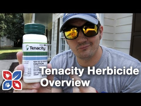 Tenacity Herbicide Overview - Lawn Care Products | DoMyOwn com