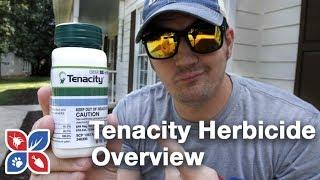 Tenacity Herbicide | Turfgrass Herbicide & Weed Killer