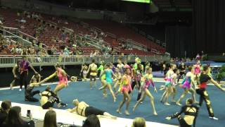 2014 Acro National Team featuring Acro Army Video