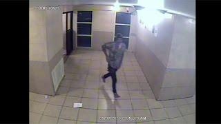 Cuomo Aide Shooting Suspect