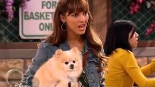 Собака точка ком   1 сезон, 4 5 серия