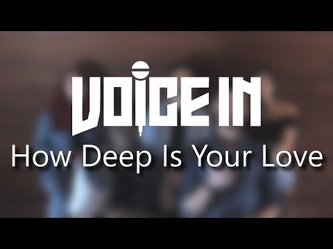 Voice In -  How Deep Is Your Love - Calvin Harris & Disciples (A Cappella Cover)
