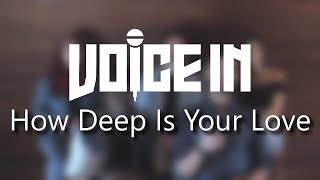 Voice In How Deep Is Your Love - Calvin Harris Disciples A Cappella Cover.mp3