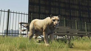 【GTA5】ライオンになってみた!?動物になれる実を食べてみた!(2/27) thumbnail