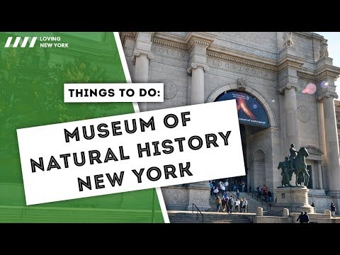 A Day At The Museum of Natural History in New York City