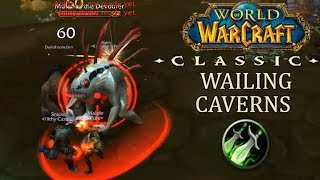 Most Damage Done in Wailing Caverns as a Rogue | WoW Classic Dungeon Run
