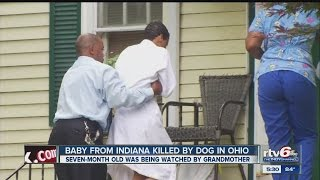 Death of baby killed by dog is ruled an accident