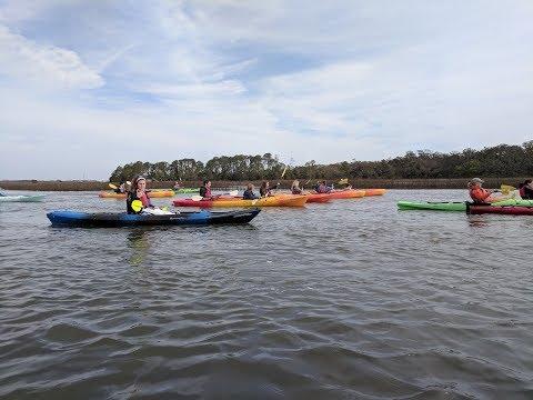 Kayaking Tour with Kayak Amelia