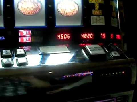 Видео Coolcat casino online