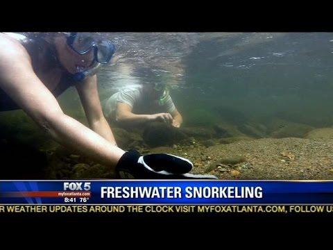 Hidden treasure: Snorkeling in north Georgia