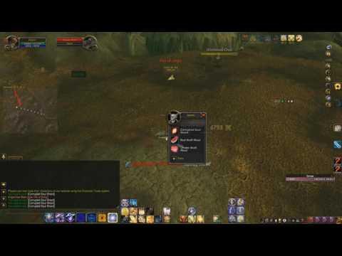 Salve Via Hunting WoW Quest Walkthrough