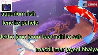 aquarium fish lene ke pahle kin bato ka dhyan rakhe or kese le1