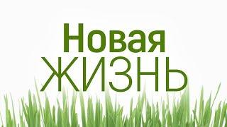 """Проповедь: """"Новая жизнь"""" (Алексей Коломийцев)"""