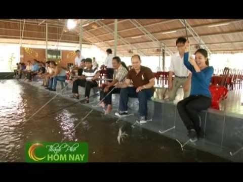 Câu tôm giữa lòng phố thị - Thành Phố Hôm Nay [HTV9 -- 01.04.2014]