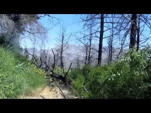Grizzly Flats - Hiking Los Angeles - Angeles National Forest (HD)