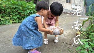 農村姐妹倆摘一老南瓜,老爸做一道特色小吃,又甜又糯吃了還想吃
